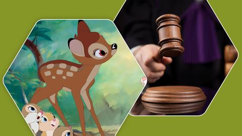 Urteil Bambi gucken