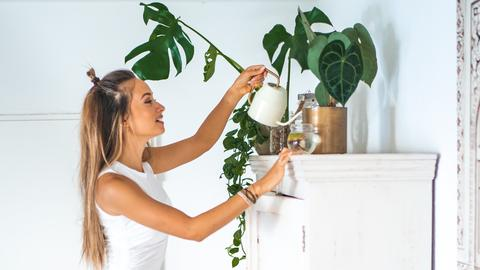 Anne ist Plantfluencerin