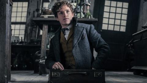 """Eddie Redmayne als Newt Scamander in """"Phantastische Tierwesen: Grindelwalds Verbrechen"""""""